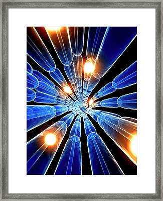Human Nerve Cell Framed Print