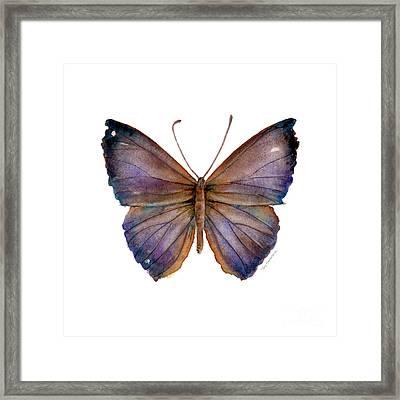 18 Purple Pandemos Framed Print by Amy Kirkpatrick
