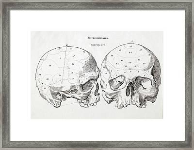 1823 Craniology Craniometry Region Skull Framed Print
