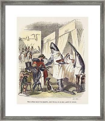 1842 Surgeon Doctors As Sharks Framed Print by Paul D Stewart
