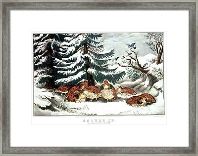 1860s Snowed Up - Ruffed Grouse Framed Print