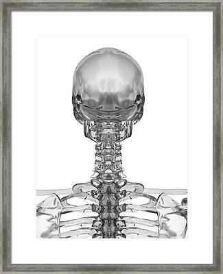 Human Skull Framed Print by Sciepro
