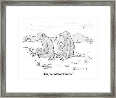 Did You Switch Conditioners? Framed Print