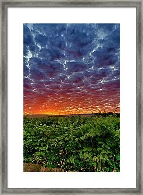 Usa, Washington, Walla Walla Framed Print by Richard Duval