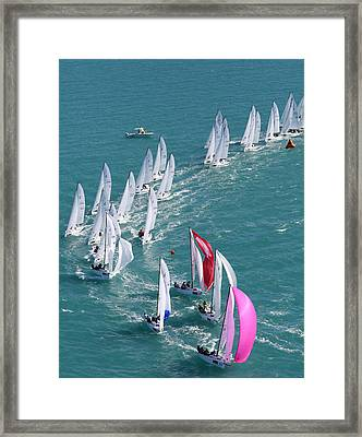 Key West Regatta Framed Print by Steven Lapkin