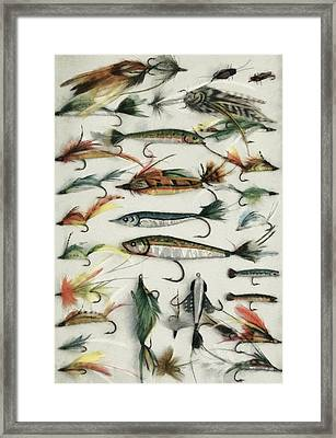 1920's Fishing Flies Framed Print