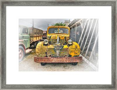 1946 Dodge Truck Framed Print by Daniel Hagerman