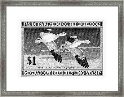 1947 American Bird Hunting Stamp Framed Print by Historic Image
