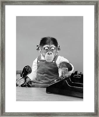 1950s Chimpanzee In Overalls Dialing Framed Print