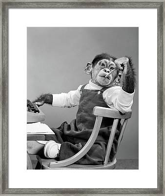 1950s Chimpanzee In Overalls Sitting Framed Print