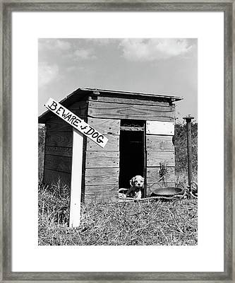1950s Cocker Spaniel Puppy In Doghouse Framed Print