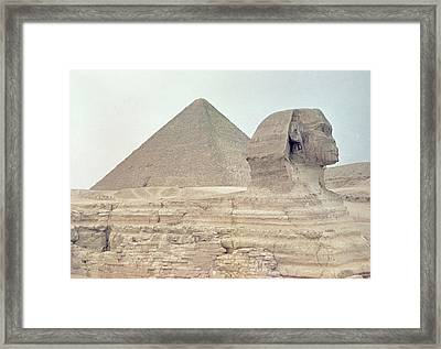 1950s Great Pyramid Of Giza Framed Print