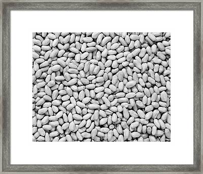 1950s Unsalted Shelled Peanuts Framed Print