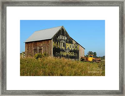 1951 Ford Pick Up Truck At The Barn Framed Print by Paul Ward