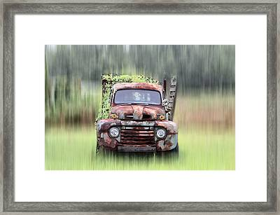 1951 Ford Truck - Found On Road Dead Framed Print by Bill Cannon