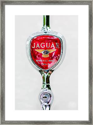 1955 Jaguar Emblem -0012c Framed Print by Jill Reger