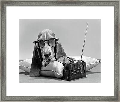 1960s Basset Hound Character Wearing Framed Print