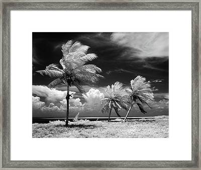1960s Infrared Scenic Photograph Framed Print