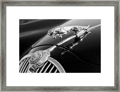 1964 Jaguar Mk2 Saloon Hood Ornament And Emblem Framed Print by Jill Reger