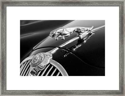 1964 Jaguar Mk2 Saloon Hood Ornament And Emblem Framed Print