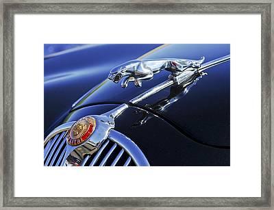 1964 Jaguar Mk2 Saloon Framed Print by Jill Reger