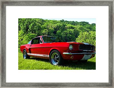 1965 Mustang Gt350 Framed Print by Tim McCullough