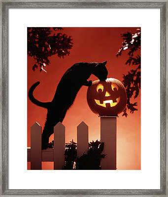 1980s Jack-o-lantern & Black Cat Framed Print