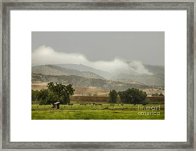 1st Day Of Rain Great Colorado Flood Framed Print