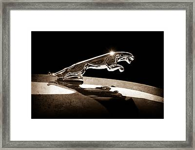 1961 Jaguar Kougar Hood Ornament Framed Print by Jill Reger