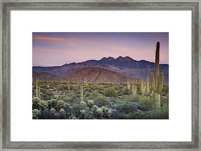 A Desert Sunset  Framed Print