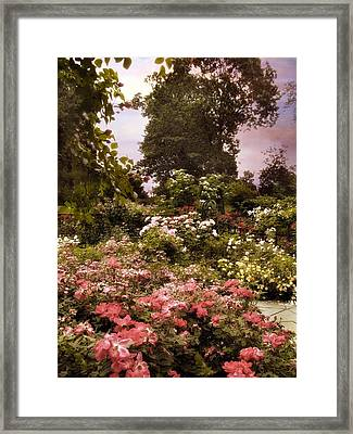 A Garden Somewhere Framed Print by Jessica Jenney