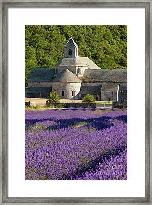 Abbaye De Senanque Framed Print