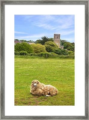 Abbotsbury Framed Print by Joana Kruse