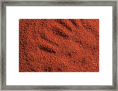 Abstract Texture - Red Framed Print
