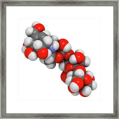 Acarbose Diabetes Drug Molecule Framed Print