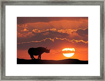 Africa, Kenya, Masai Mara Game Reserve Framed Print by Jaynes Gallery