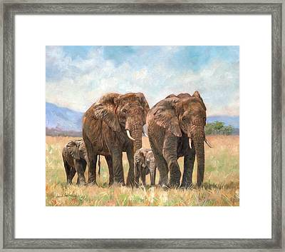 African Elephants Framed Print