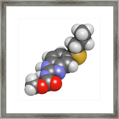 Albendazole Anthelmintic Drug Molecule Framed Print