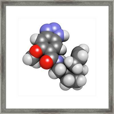 Alizapride Antiemetic Drug Molecule Framed Print by Molekuul