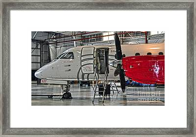 All Aboard Framed Print by Diane E Berry