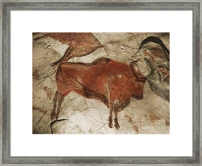 Altamira Cave Paintings Framed Print by Photo Researchers
