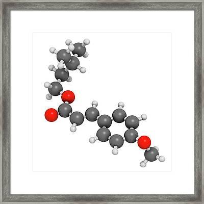 Amiloxate Sunscreen Molecule Framed Print by Molekuul