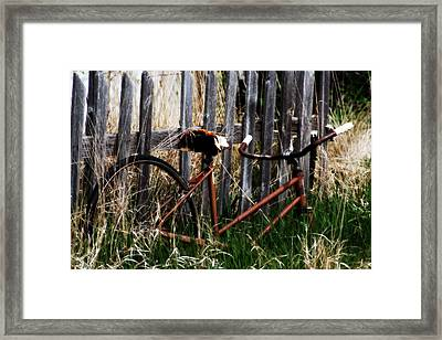 Among The Growth Framed Print