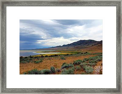 Framed Print featuring the photograph Antelope Island by Jemmy Archer