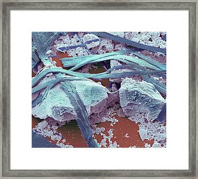 Antibacterial Toothpaste Framed Print by Steve Gschmeissner