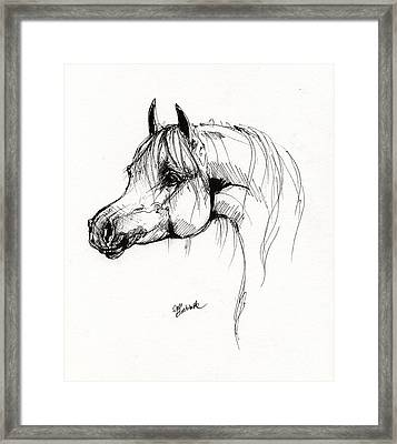 Arabian Horse Drawing 6 Framed Print by Angel  Tarantella