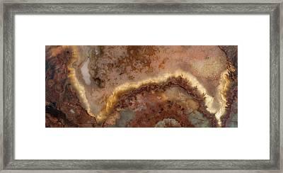 Art In Nature Framed Print by Leland D Howard
