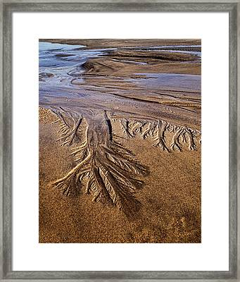 Framed Print featuring the photograph Artwork Of The Tides by Gary Slawsky