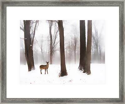 As Winter Calls Framed Print by Jessica Jenney