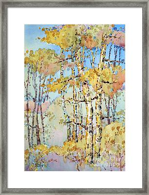 Aspen Color Framed Print
